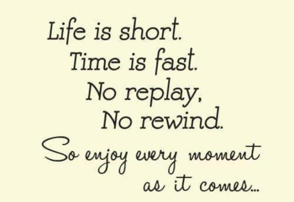 life-is-shorttime-is-fastno-replayno-rewindso-enjoy-every-moment-as-it-comes-life-quote